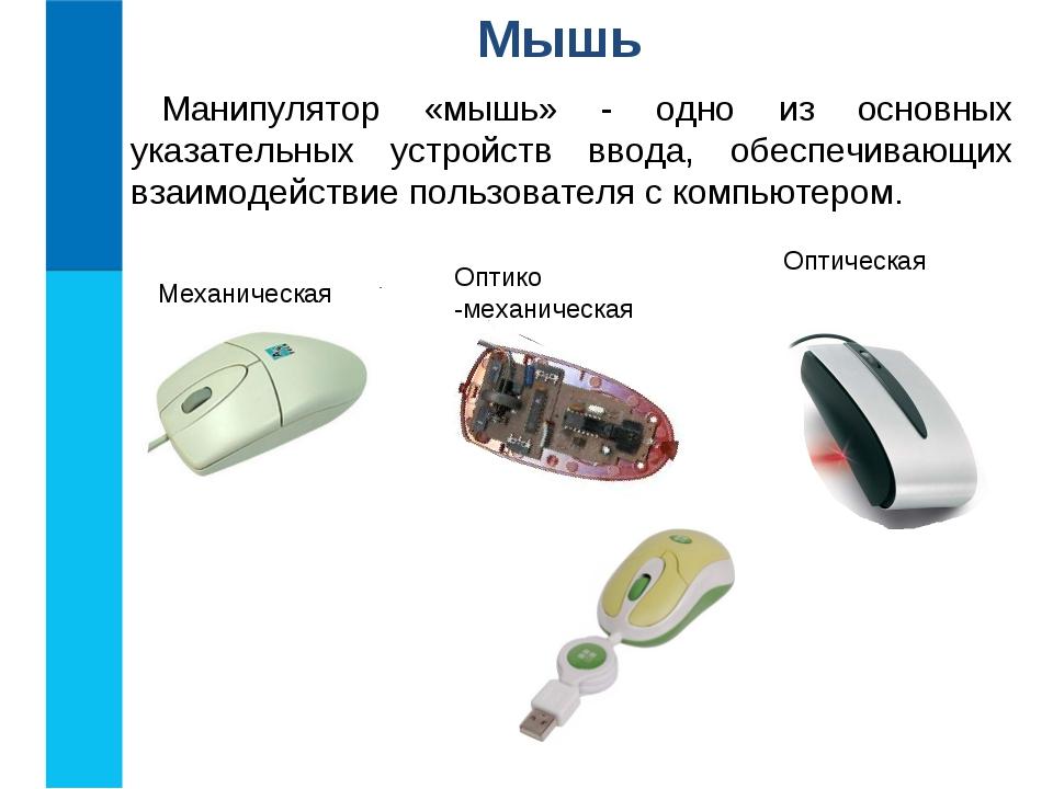 Мышь Манипулятор «мышь» - одно из основных указательных устройств ввода, обес...