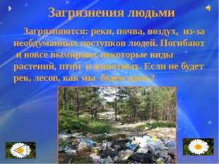 Загрязнения людьми Загрязняются: реки, почва, воздух, из-за необдуманных пос