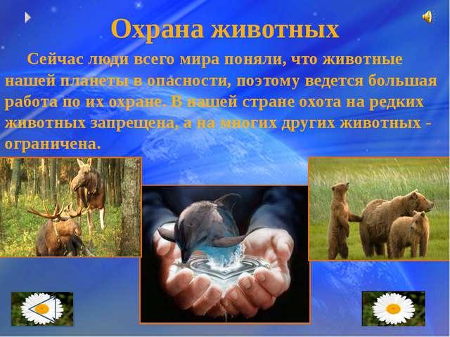 Заповедники Для защиты отдельных видов растений и животных от полного уничтож...
