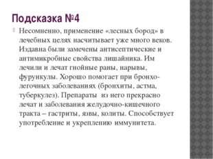 Подсказка №4 Несомненно, применение «лесных бород» в лечебных целях насчитыва