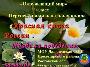 «Окружающий мир» 2 класс Перспективная начальная школа «Красная книга России