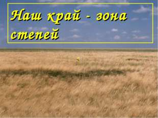Наш край - зона степей
