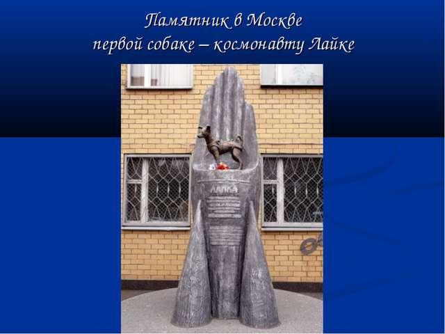 Памятник в Москве первой собаке – космонавту Лайке