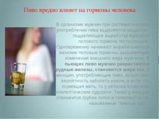 Пиво вредно влияет на гормоны человека В организме мужчин при систематическом