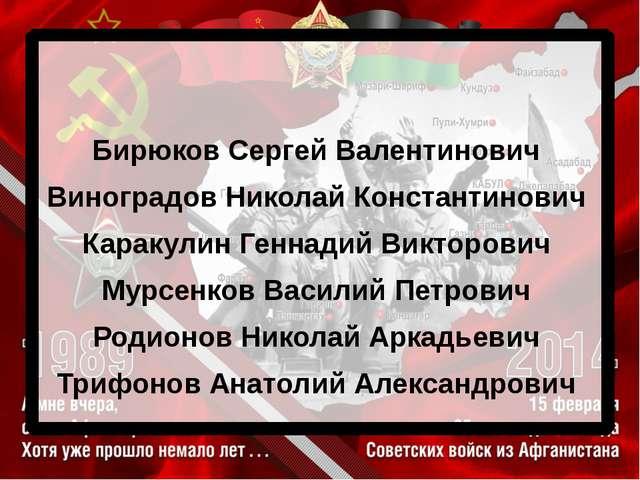 Бирюков Сергей Валентинович Виноградов Николай Константинович Каракулин Генн...