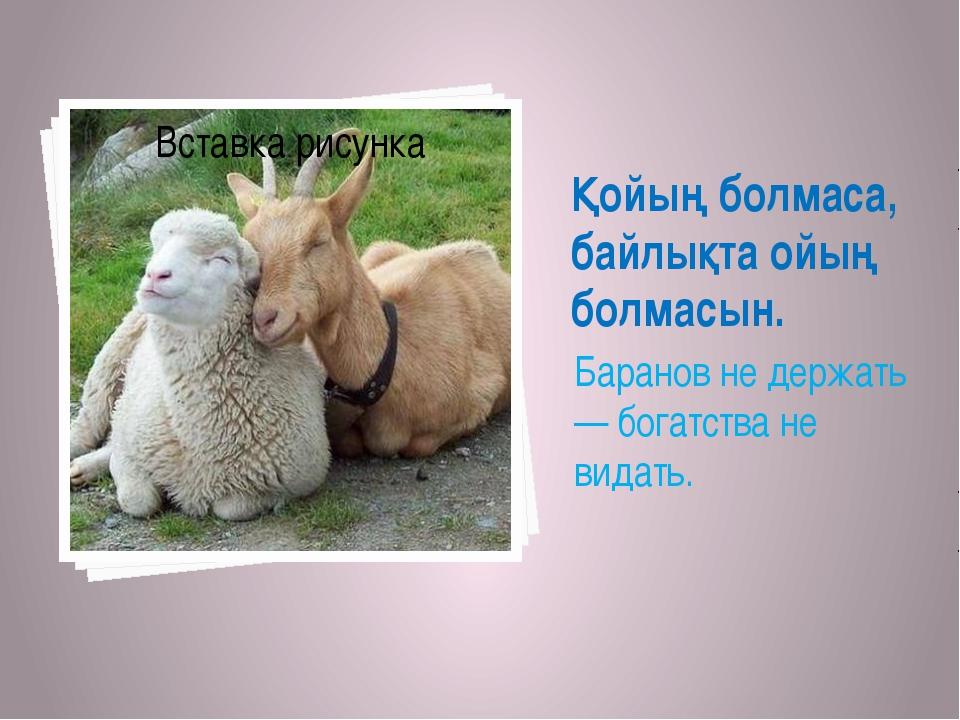 Қойың болмаса, байлықта ойың болмасын. Баранов не держать — богатства не вида...
