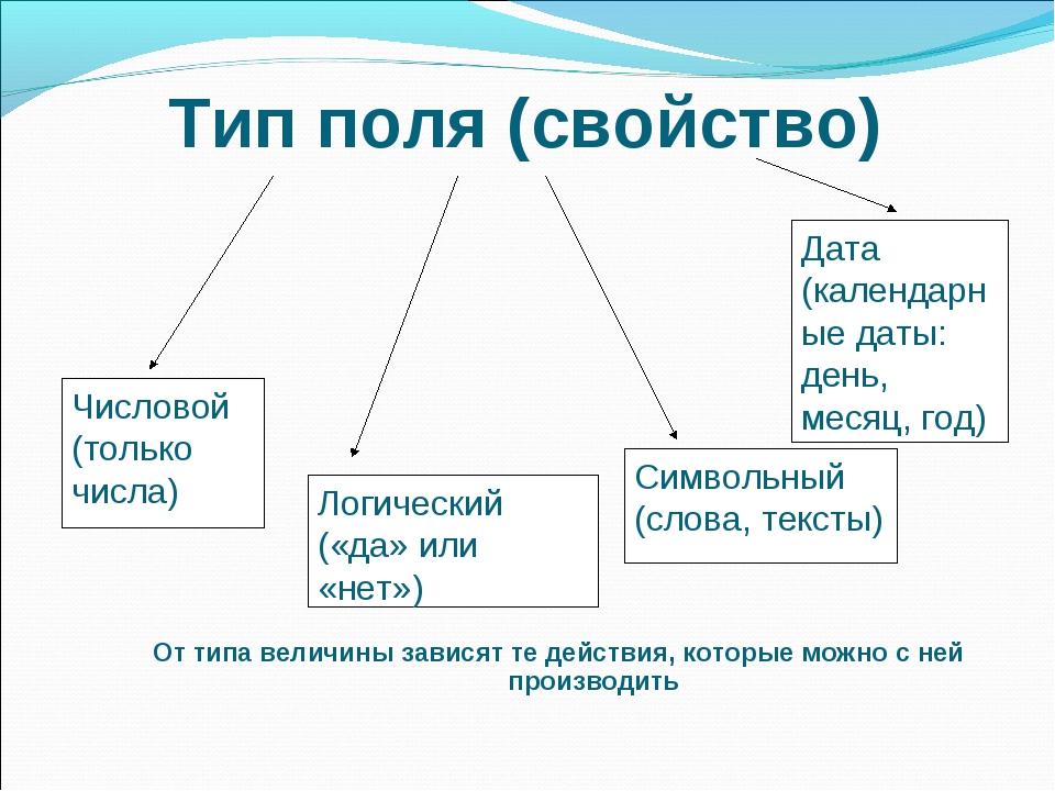 Тип поля (свойство) От типа величины зависят те действия, которые можно с ней...