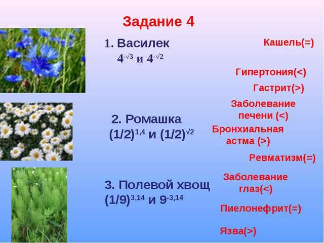 Задание 4 1. Василек 4-√3 и 4-√2 2. Ромашка (1/2)1,4 и (1/2)√2 3. Полевой хво...