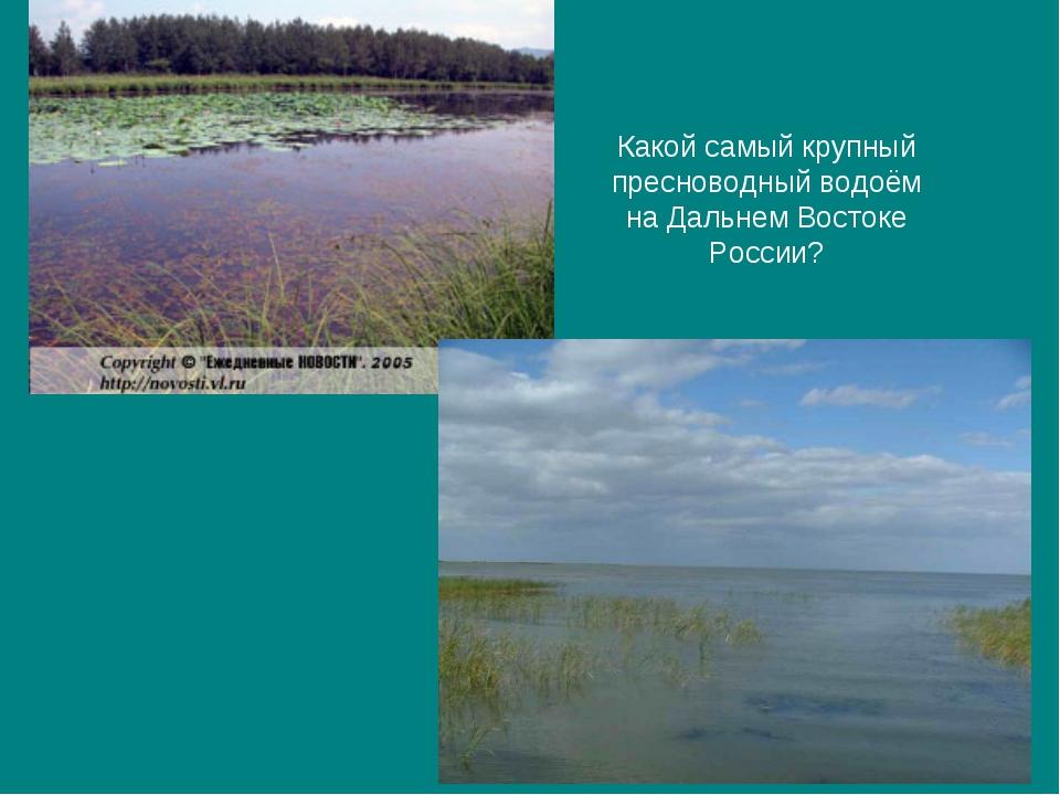 Какой самый крупный пресноводный водоём на Дальнем Востоке России?