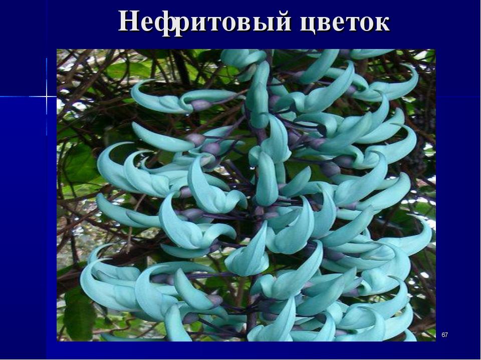 Нефритовый цветок *