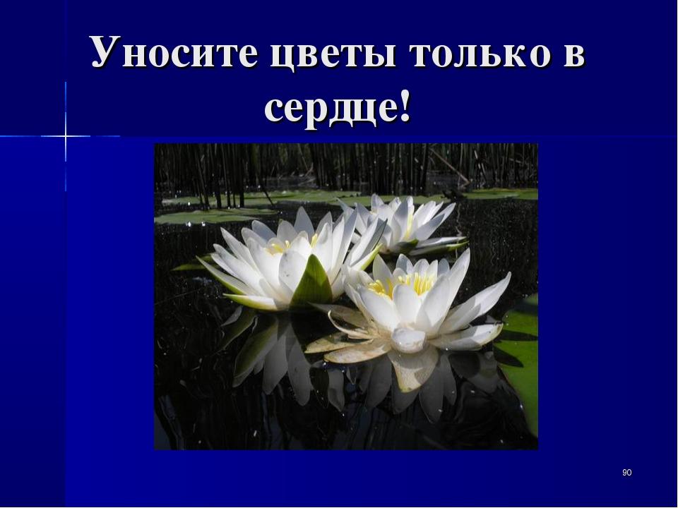 Уносите цветы только в сердце! *