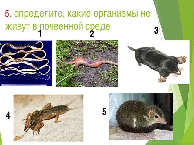 5. определите, какие организмы не живут в почвенной среде 1 2 3 4 5