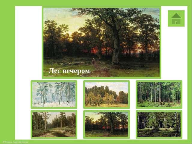 Лес вечером © Фокина Лидия Петровна