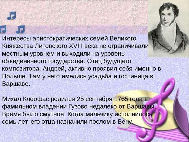 Интересы аристократических семей Великого Княжества Литовского XVIII века не...