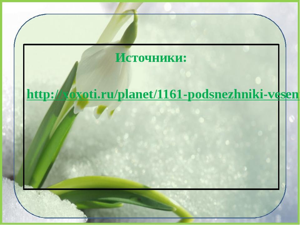 Источники:  http://xoxoti.ru/planet/1161-podsnezhniki-vesennee-nastroenie.html