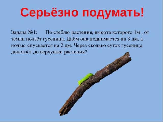 Серьёзно подумать! Задача №1: По стеблю растения, высота которого 1м , от зем...