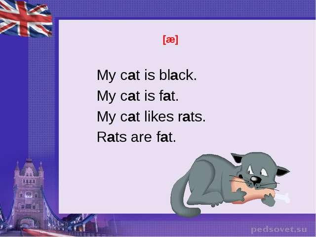 [æ] My cat is black. My cat is fat. My cat likes rats. Rats are fat.