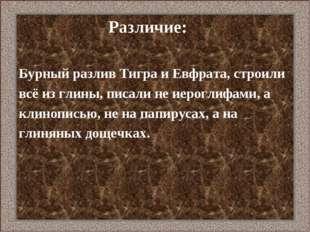 Различие: Бурный разлив Тигра и Евфрата, строили всё из глины, писали не иер