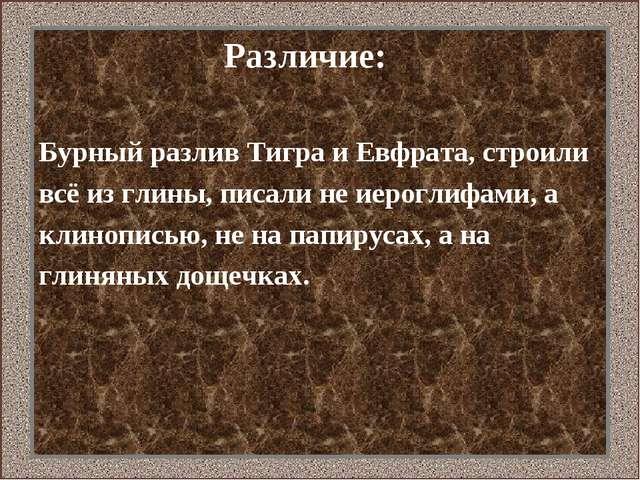 Различие: Бурный разлив Тигра и Евфрата, строили всё из глины, писали не иер...