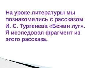На уроке литературы мы познакомились с рассказом И. С. Тургенева «Бежин луг».