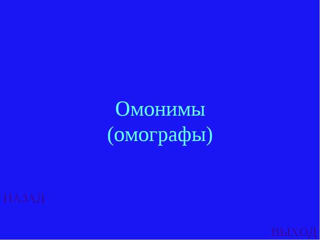 НАЗАД ВЫХОД Омонимы (омографы)