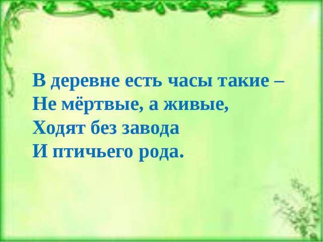 В деревне есть часы такие – Не мёртвые, а живые, Ходят без завода И птичьего...