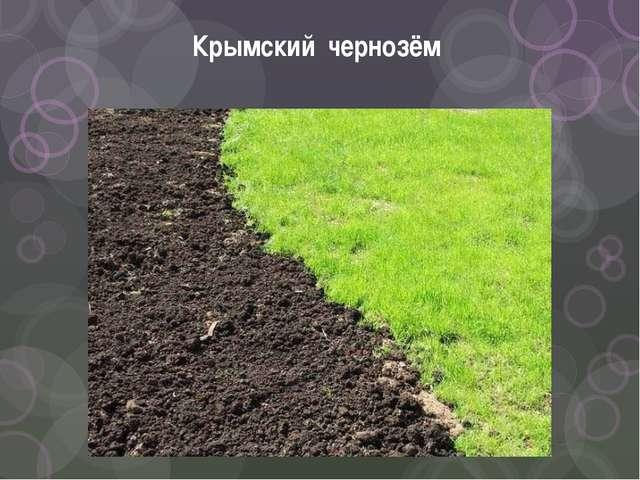Крымский чернозём