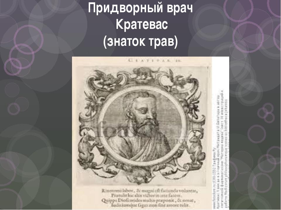 Придворный врач Кратевас (знаток трав)
