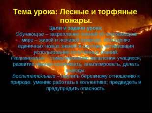 Тема урока: Лесные и торфяные пожары. Цели и задачи урока: Обучающие –закреп