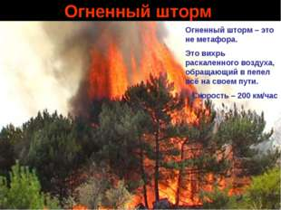 Огненный шторм Огненный шторм – это не метафора. Это вихрь раскаленного возду