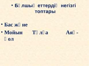 Бұлшық еттердің негізгі топтары Бас және Мойын Тұлға Аяқ-қол