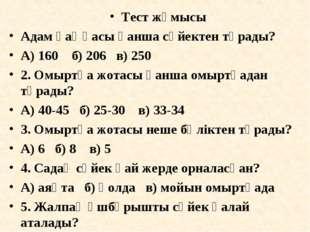 Тест жұмысы Адам қаңқасы қанша сүйектен тұрады? А) 160 б) 206 в) 250 2. Омырт