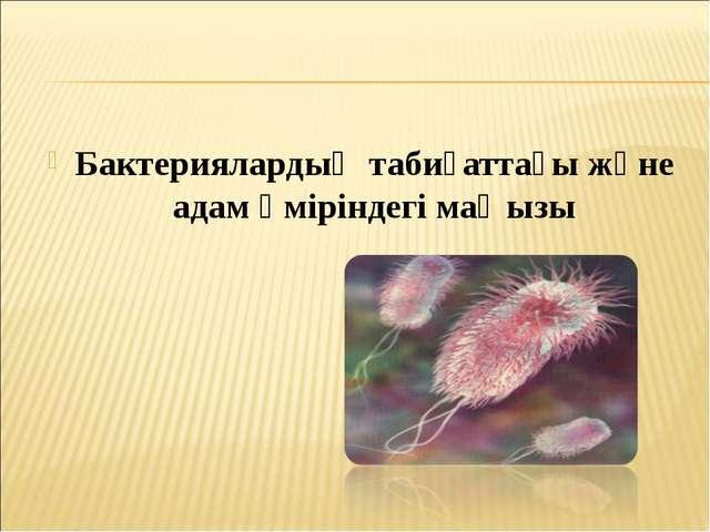 Бактериялардың табиғаттағы және адам өміріндегі маңызы
