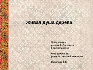 Живая душа дерева Подготовил: ученик 6 «В» класса Ершов Николай Руководитель: