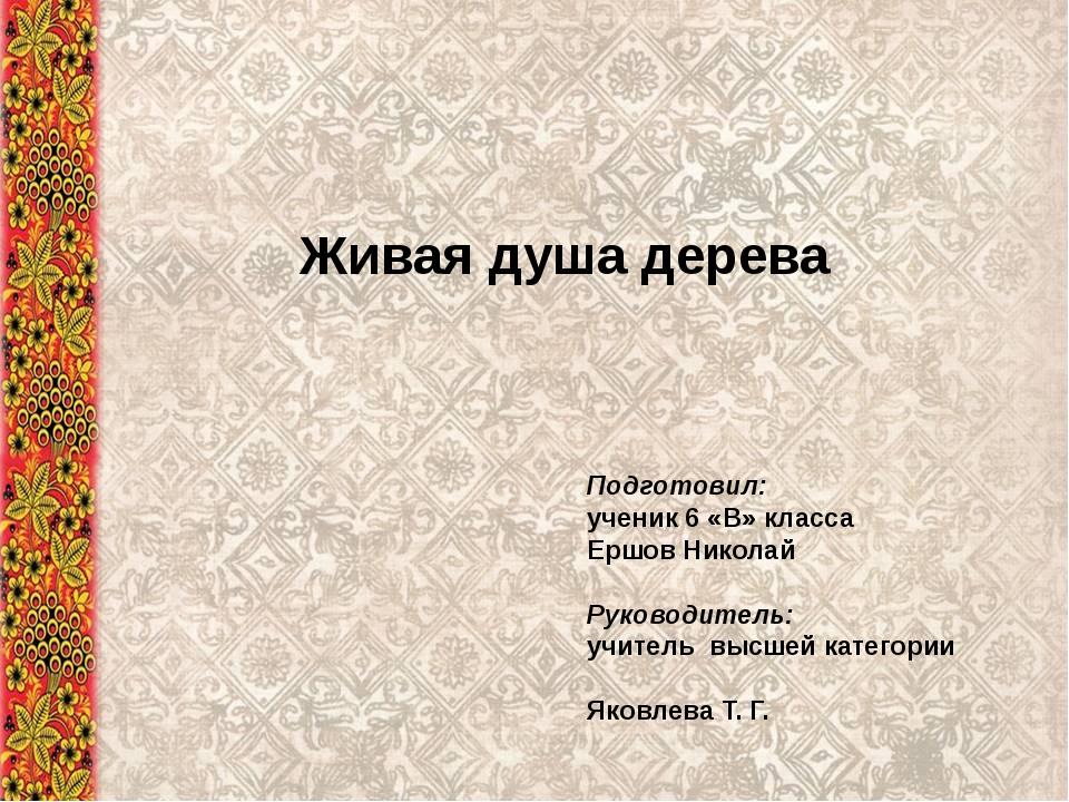 Живая душа дерева Подготовил: ученик 6 «В» класса Ершов Николай Руководитель:...