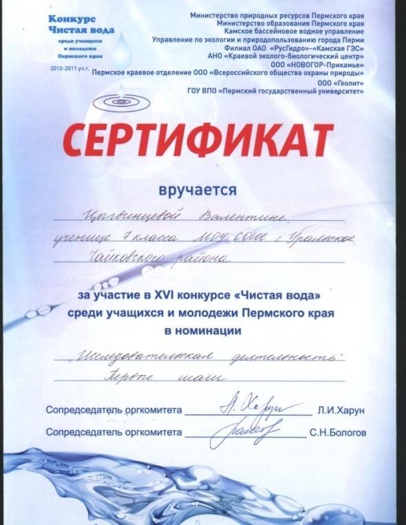 K:\аттестация, ЦВИ\Валентина Ивановна, портфолио\портфолио сейчас\Изображение8.jpg