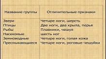 hello_html_21aa50c4.jpg