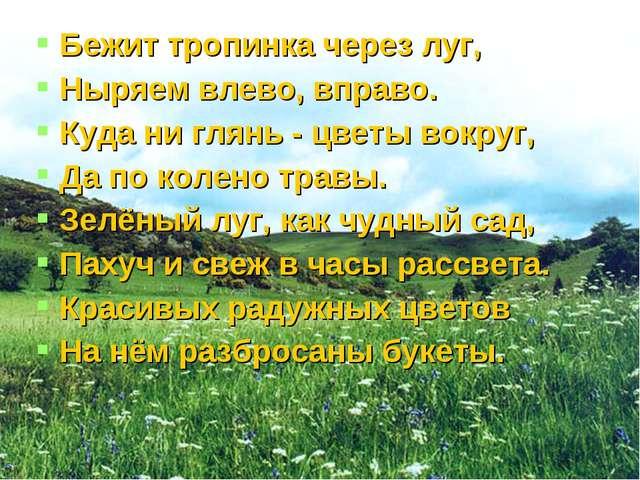 Бежит тропинка через луг, Ныряем влево, вправо. Куда ни глянь - цветы вокруг,...