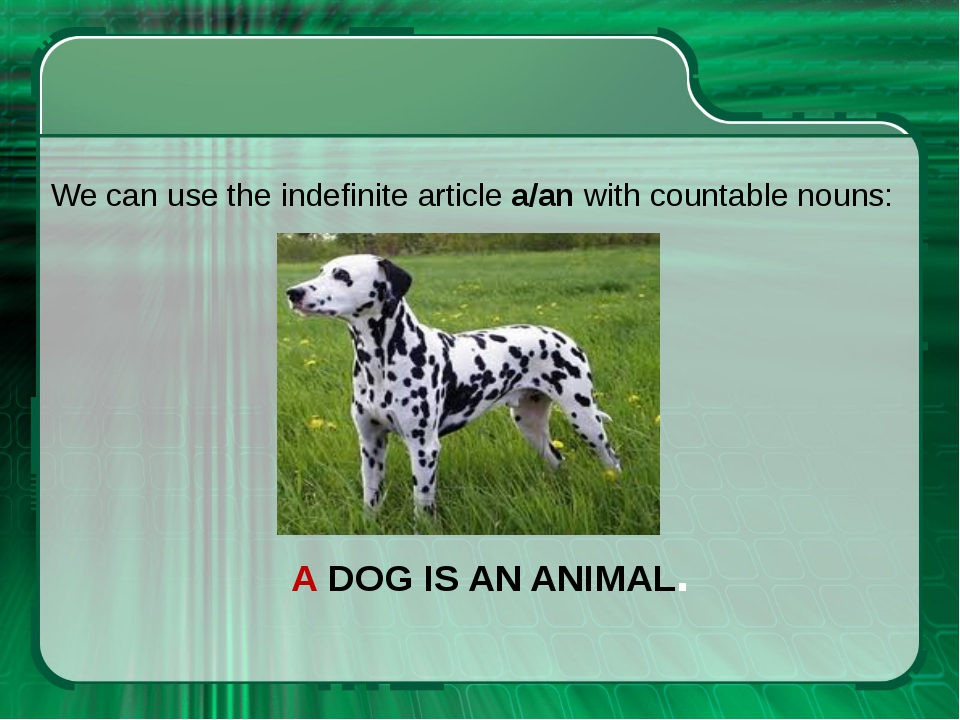A DOG IS AN ANIMAL. We can use the indefinite article a/an with countable nou...