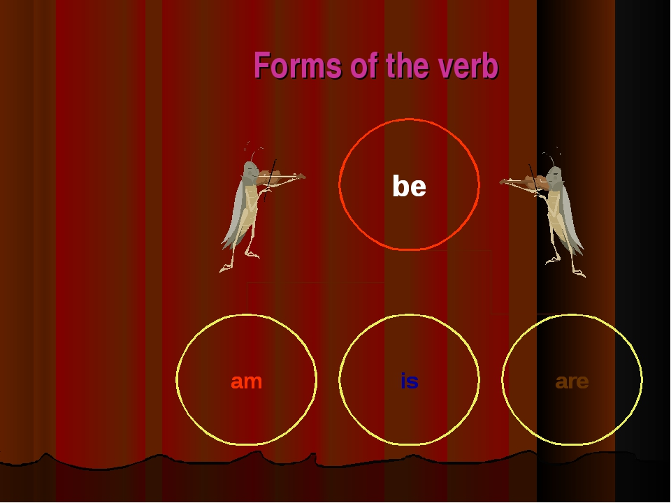 Forms of the verb