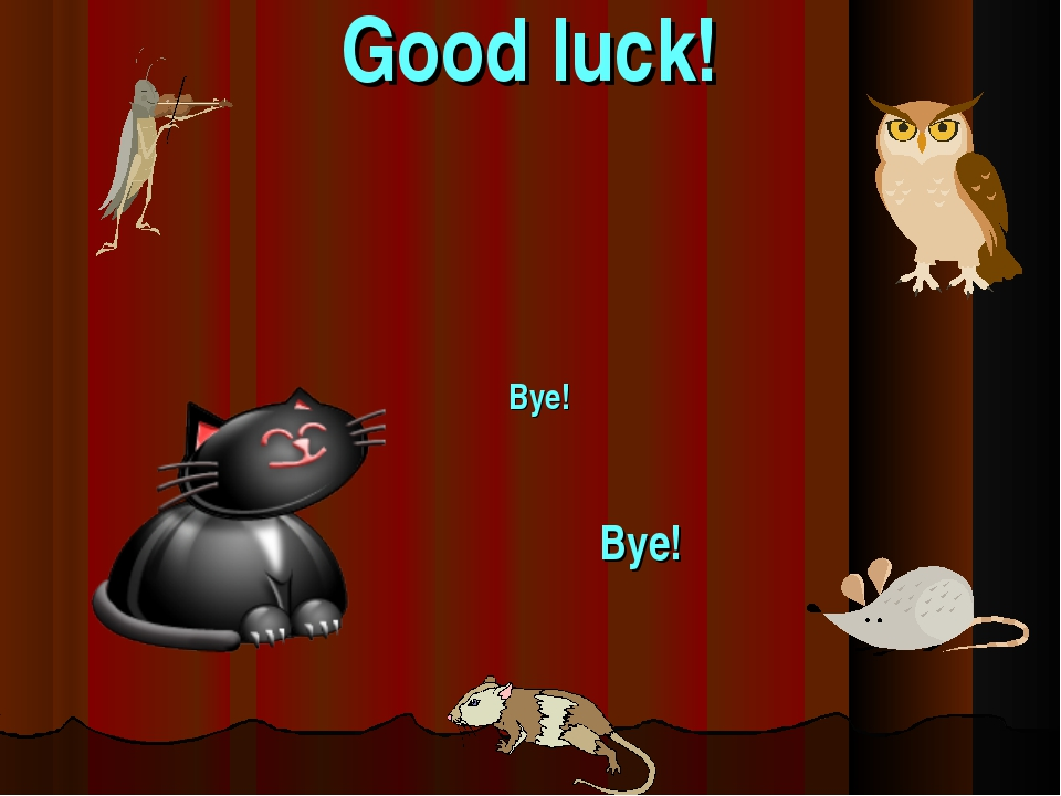 Good luck! Bye! Bye!