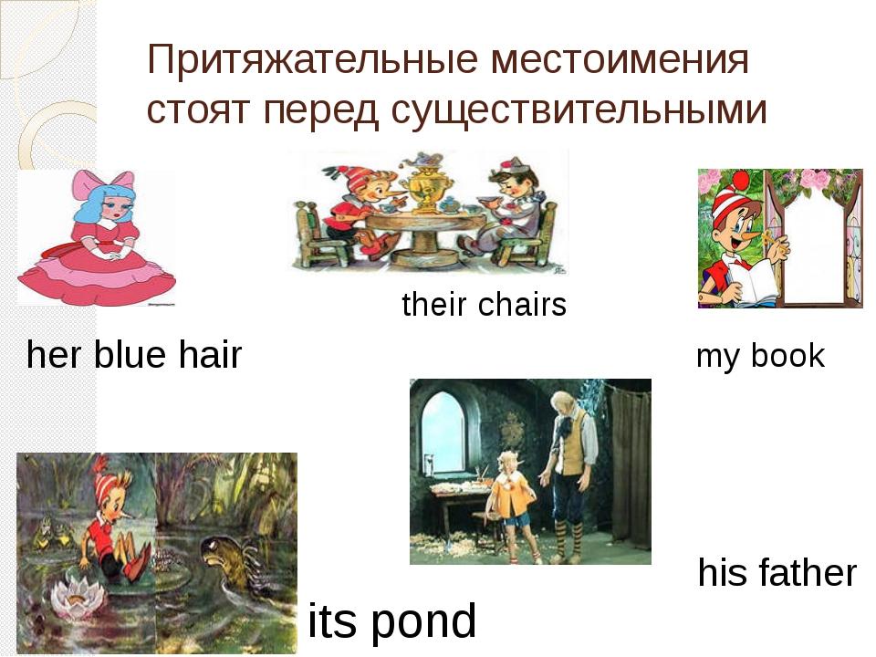 Притяжательные местоимения стоят перед существительными her blue hair its pon...