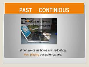 PAST CONTINIOUS When we came home my Hedgehog was playing computer games.