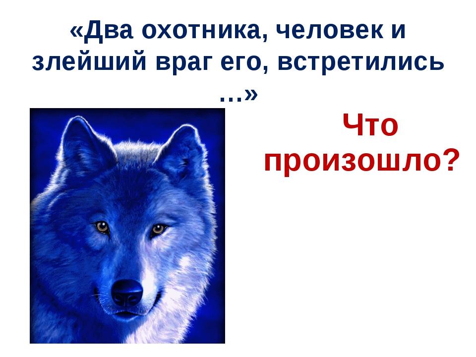 «Два охотника, человек и злейший враг его, встретились …» Что произошло?
