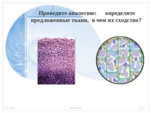 Проведите аналогию: определите предложенные ткани, в чем их сходство? Стр.