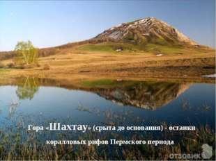 Гора «Шахтау» (срыта до основания) - останки коралловых рифов Пермского периода