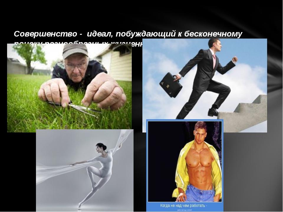 Совершенство - идеал, побуждающий к бесконечному поиску разнообразных жизненн...