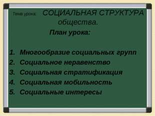 Тема урока: СОЦИАЛЬНАЯ СТРУКТУРА общества. План урока: Многообразие социальны