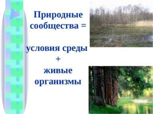 Природные сообщества = условия среды + живые организмы