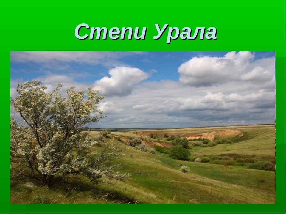 Степи Урала